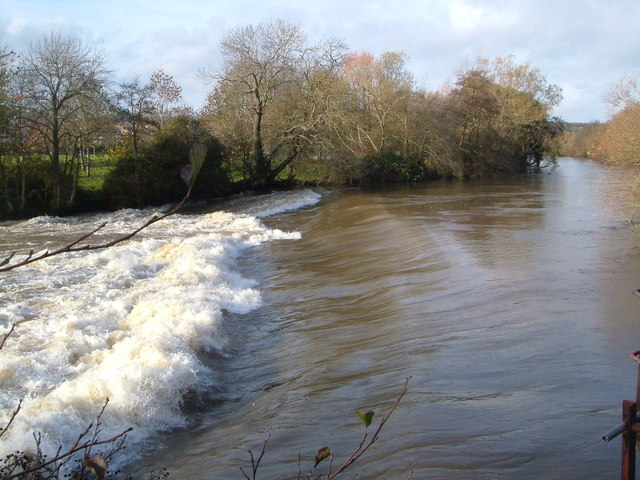 Head Weir, River Exe