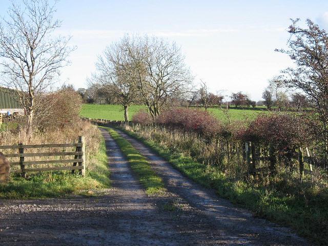 A Public Bridleway