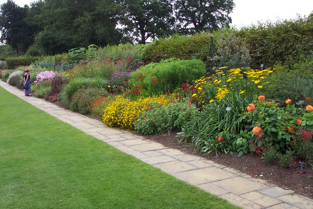 Herbaceous border at Wisley Gardens.