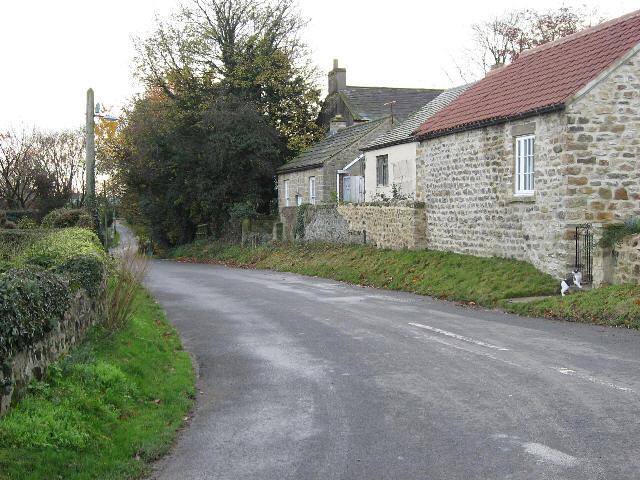 The Road To Thornton Steward