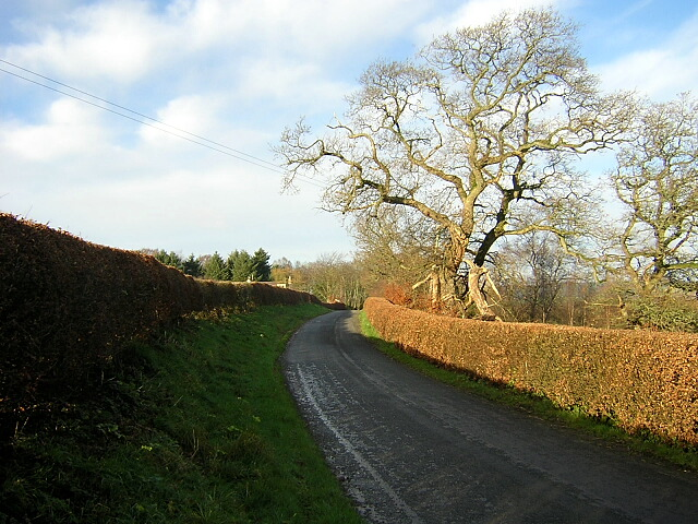 Minor Road at Mill Lands