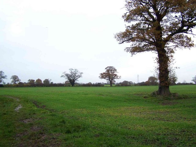 Typical South Staffordshire Countryside