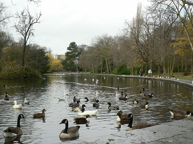 East end of the lake, Holmfield Park