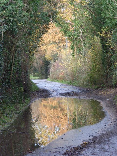 Lane near Whistley Mill