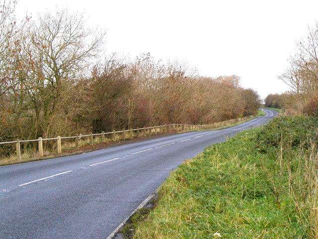 The A165