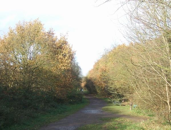 Kingswinford Railway Walk