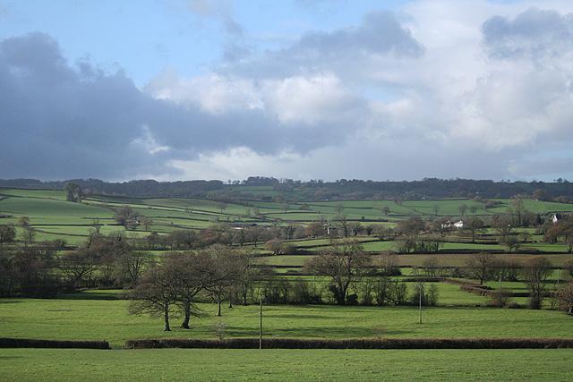 Membury: the Yarty valley