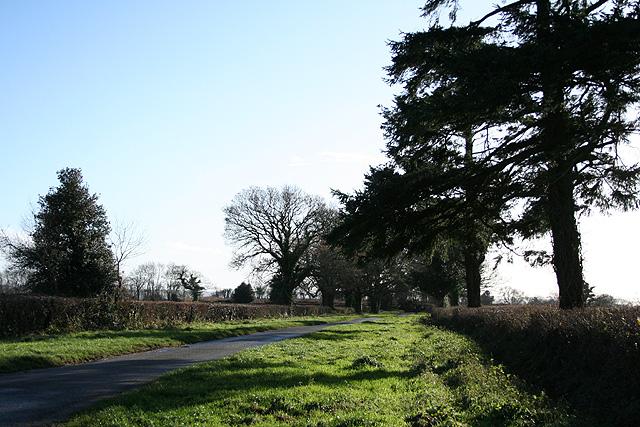 Wambrook: Green Lane
