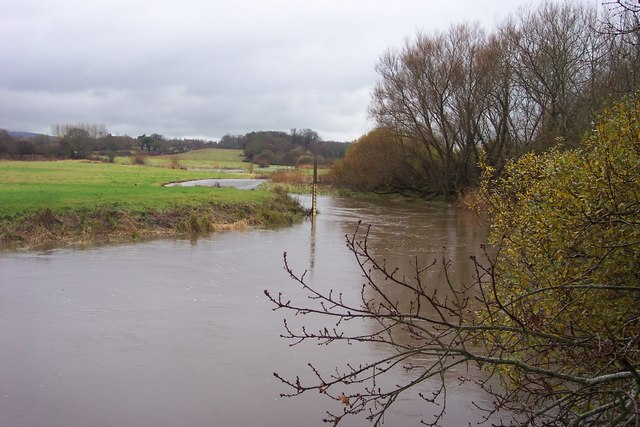 River Frome in flood.