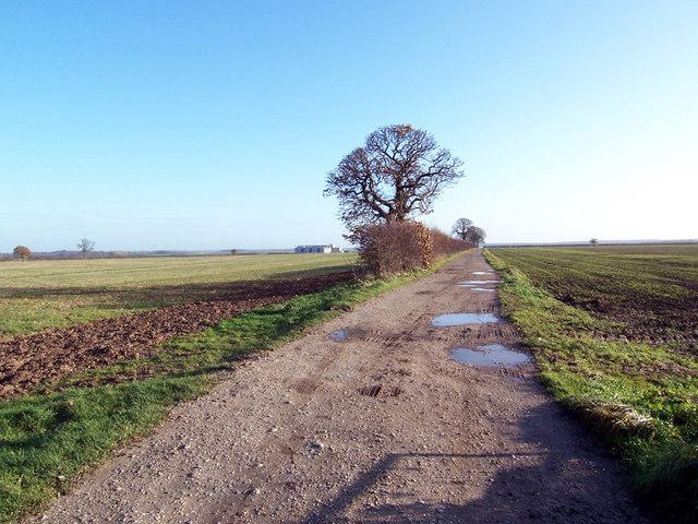 The Track to Pimlico Farm