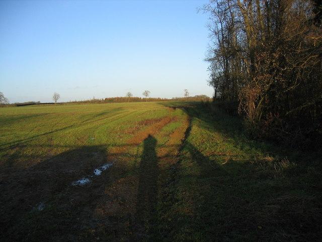 Farmland near Driffield