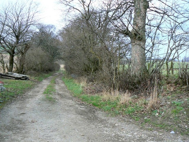 North of Conland