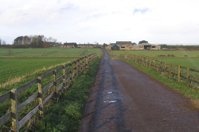 The access road to Callerburn Farm