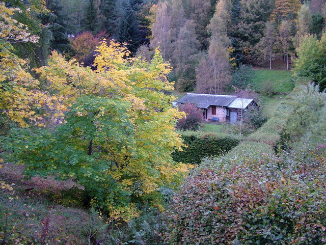 Cottage in the woods at Kildrummy