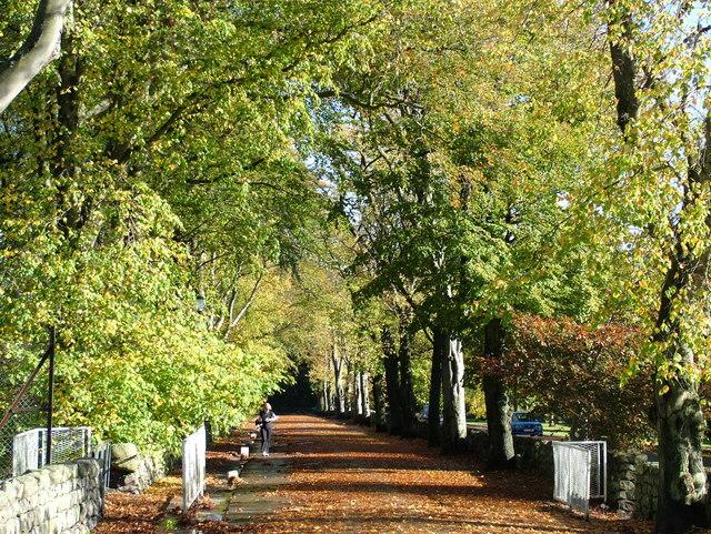 Hazlehead Avenue, Aberdeen