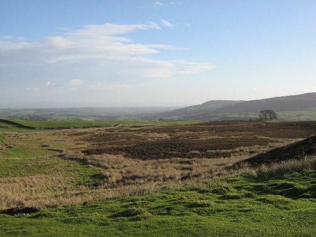 Looking Over Melmerby Moor