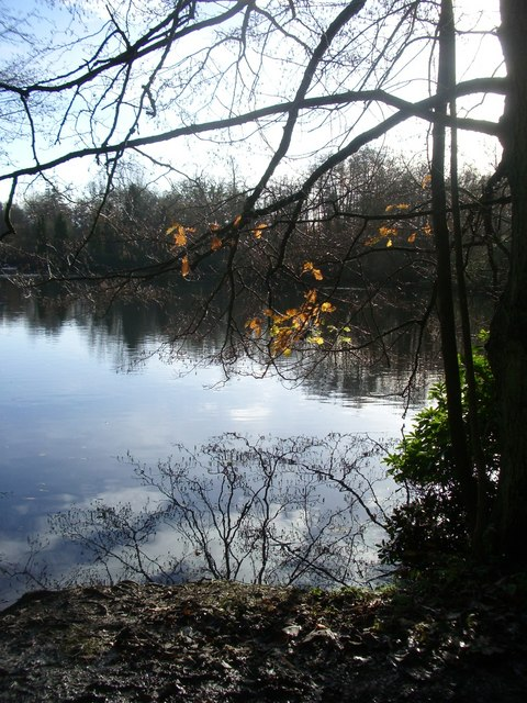 One of the ponds near Foley Manor