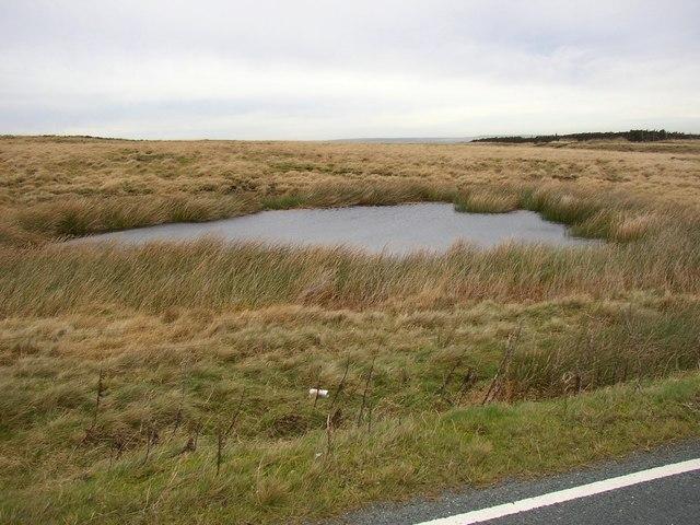 Pond next to Saddleworth Road, Scammonden