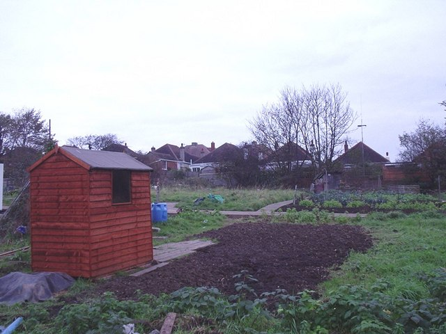 The allotments north of the Old Shoreham Road Portslade