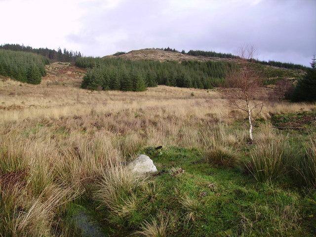Looking towards Carron Crag