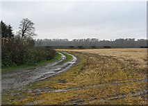 NT6933 : Tweed flood plain by Richard Webb