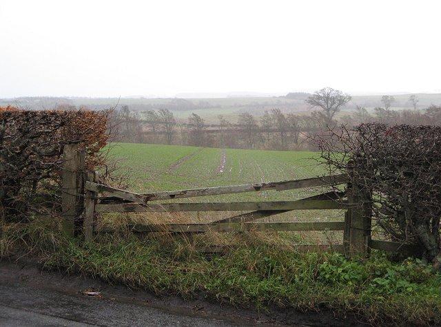 Roxburgh Barns