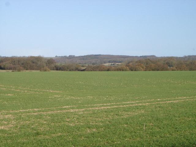Farmland near Dean looking north