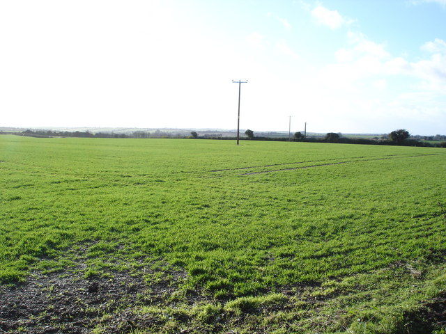 Field on Chapel Down Farm