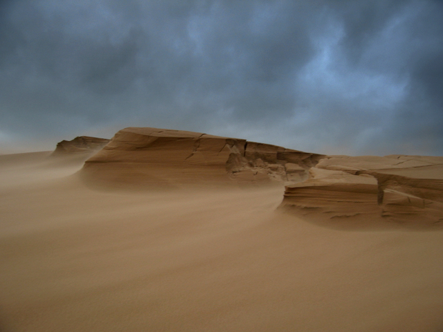 Sand storm on the Sands of Forvie