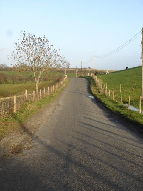 The road to Tisbury via Wallmead Farm