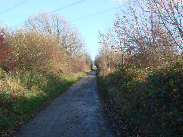 Lane leading  from Cowcroft Bridge to Balne Croft Farm