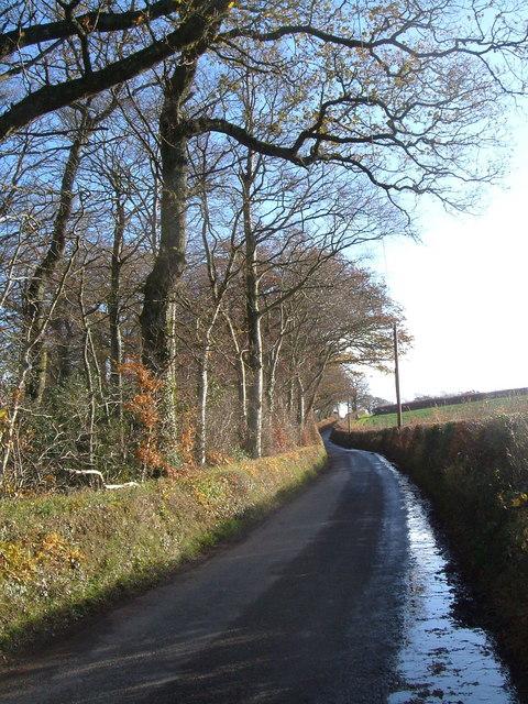 Lane past Warren Run