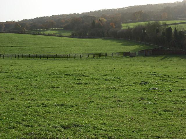 Farmland, Warren Row