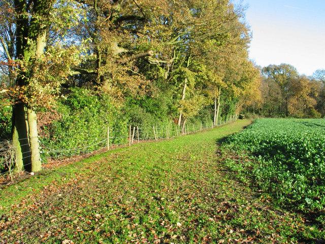 Path near Vale Royal Abbey