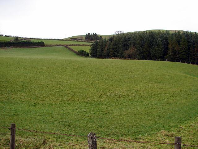 Pristine Farmland