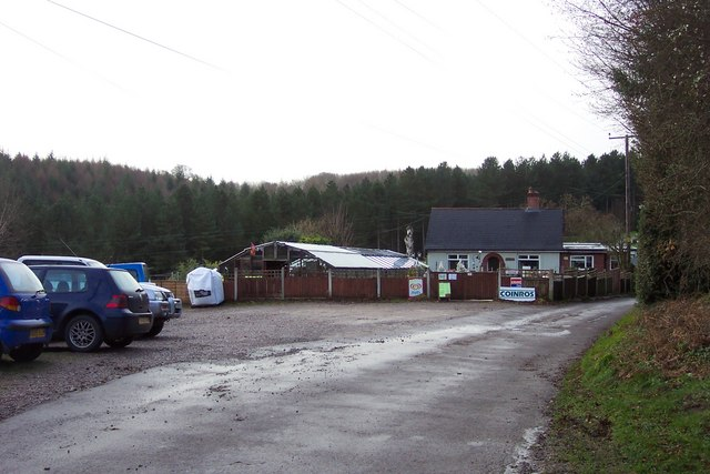 Coinros Nurseries in the Forest of Dean.