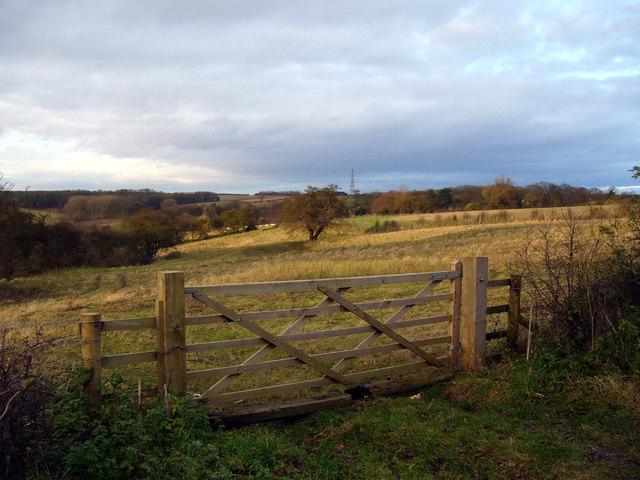 Near Newland Hill