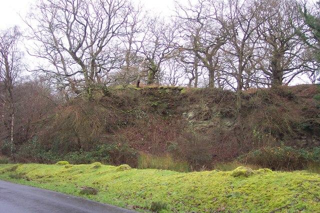 Disused quarry near Parkend.