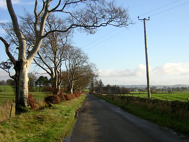 Minor Road Near Nethermill