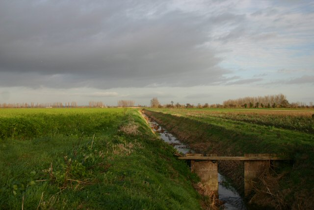 Fenland drain