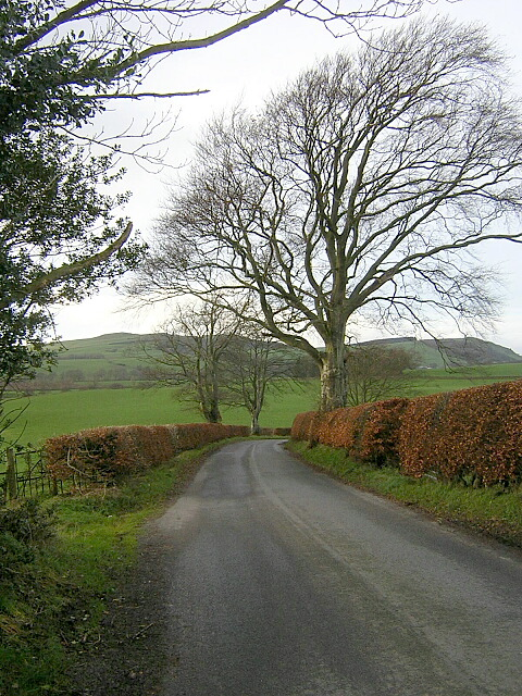 Minor Road Near Broomrigg