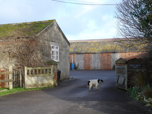 Holly Grove Farm