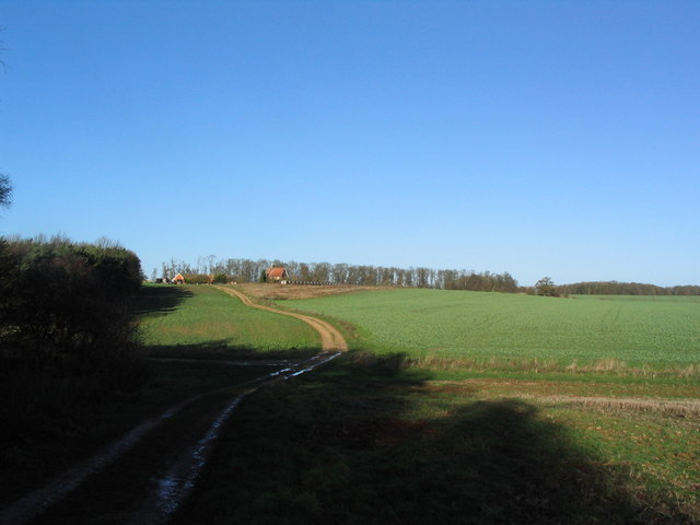 View north towards Park House, Grimsthorpe Park