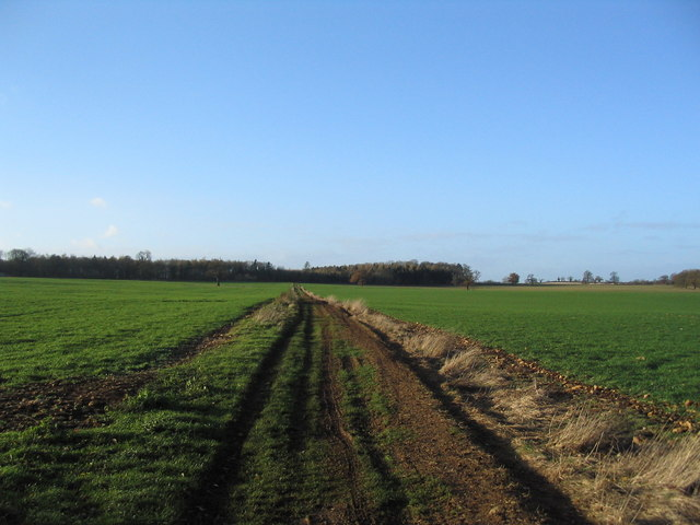 Track towards Bishopshall Wood, Grimsthorpe Park