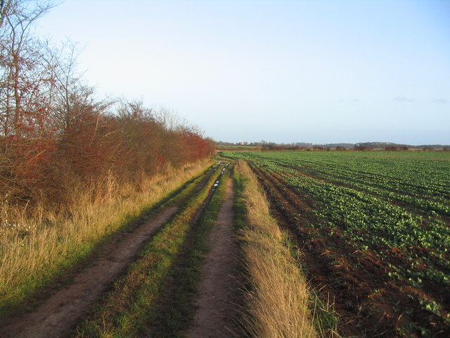 Bridleway east of Swayfield