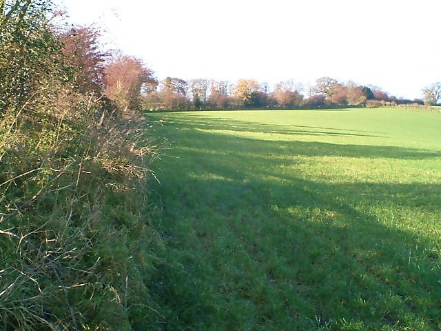 Fieldside Boundary