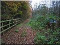 SJ5767 : Bridleway near Sandymere by Ian Nadin