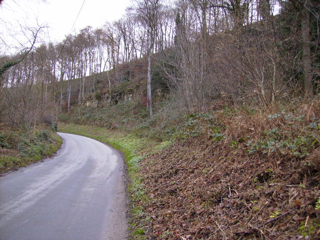 Wass Bank near the worked out quarry