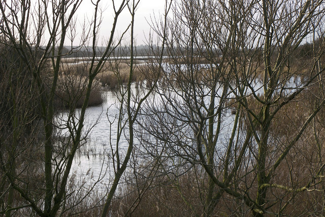 The Reedbeds in December