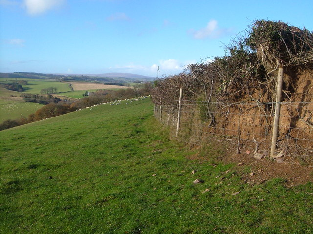 Field boundary above Woodbrooke